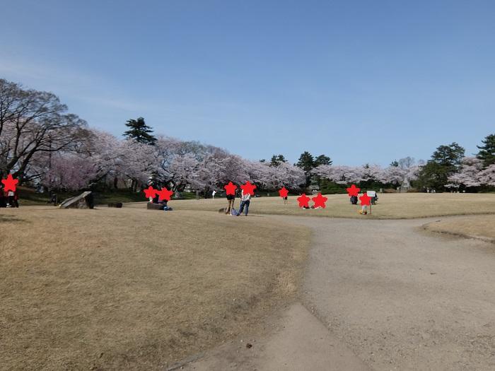 高岡古城公園の桜まつり