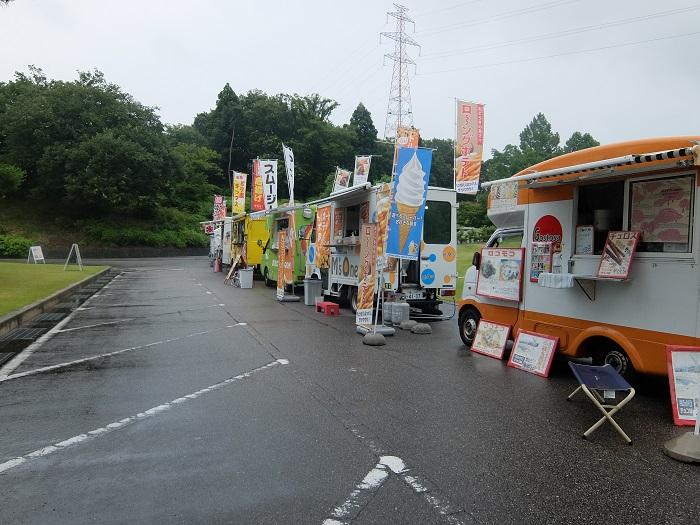太閤山ランドあじさい祭り