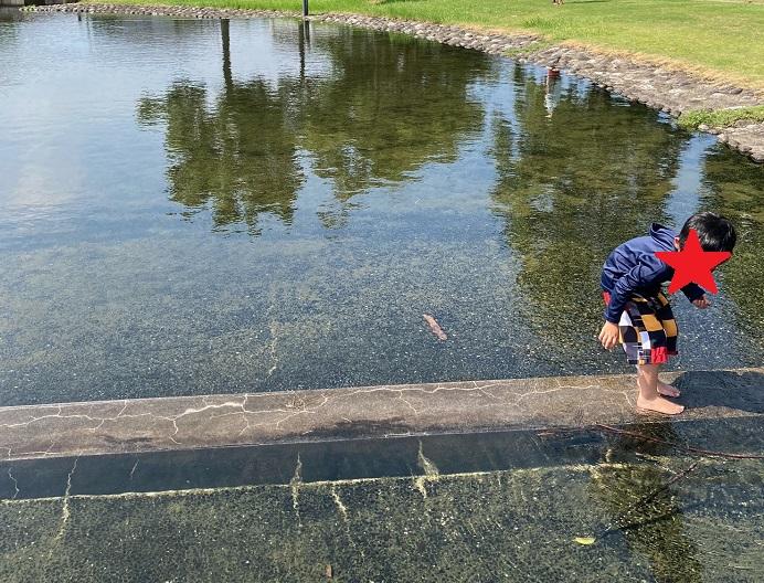 城東ふれあい公園のじゃぶじゃぶ池