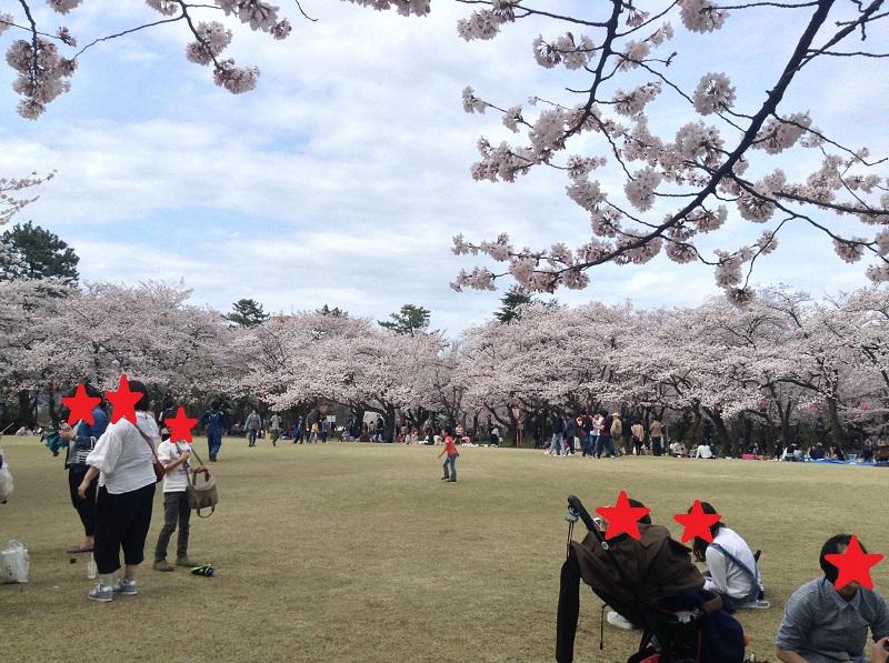 4月の高岡古城公園
